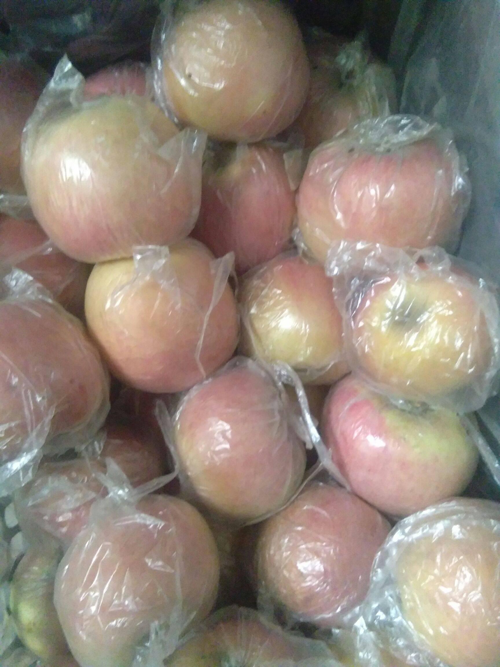 優選紅富士蘋果70一80的優質精品果,口感脆甜。