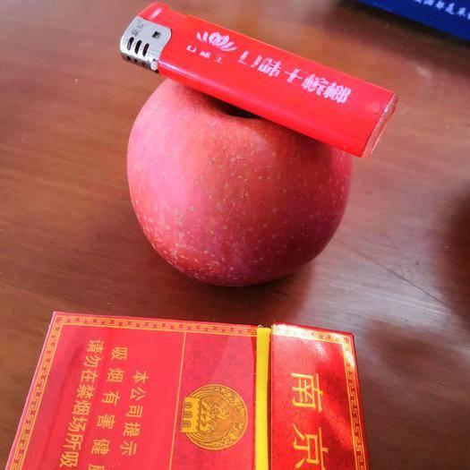 河南省商丘市虞城縣紅富士蘋果 80一下精品果