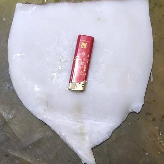 辽宁省大连市沙河口区 鱿鱼板原浆非水发。酒店餐饮专用。
