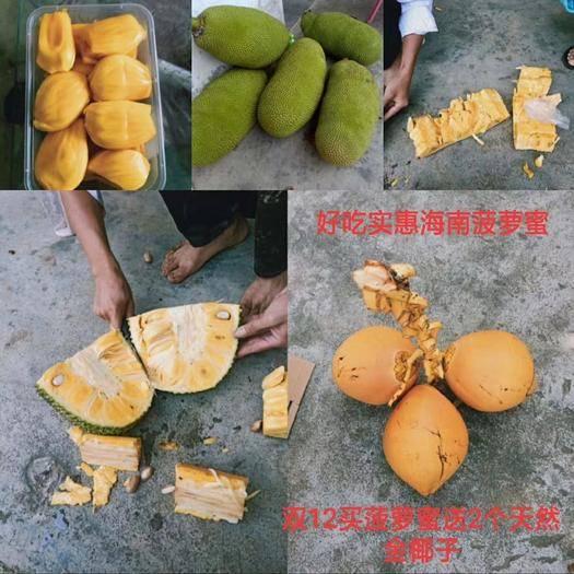 云南省昆明市官渡区海南菠萝蜜 可以一件代发。