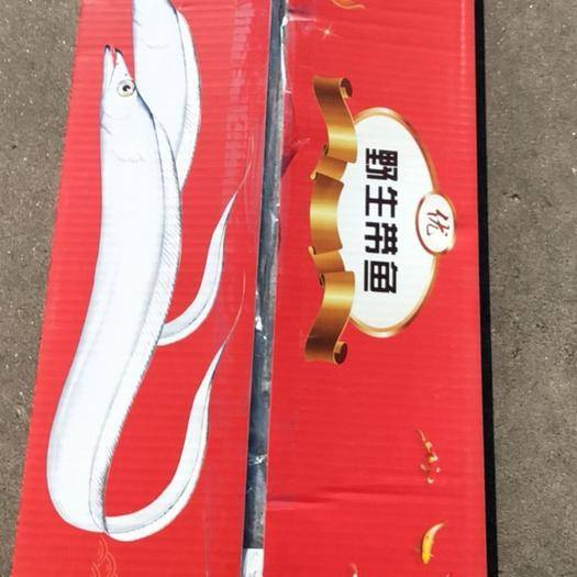 河北省保定市高碑店市 舟山野生带鱼 8斤装 批发一件代发 东海带鱼
