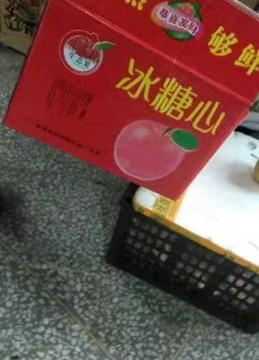 山西省运城市平陆县 山西红富士,自家山里种的苹果