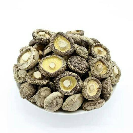 河南省南阳市南召县 自产自销,优质香菇