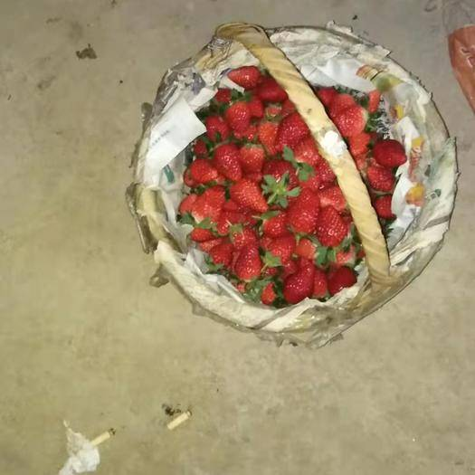安徽省宿州市萧县 萧县甜宝草莓