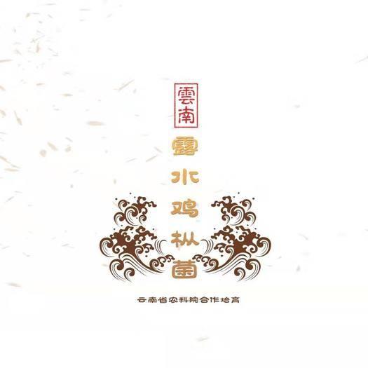 云南省昆明市官渡区 云南露水鸡枞菌,食用菌中的上品。其肉质鲜嫩,柄脆可口。