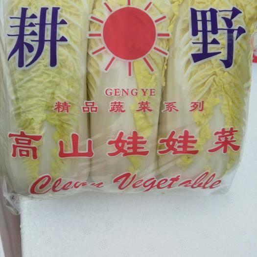 河南省濮阳市清丰县黄心娃娃菜 10两以上