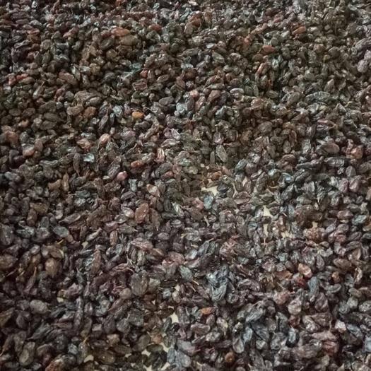新疆维吾尔自治区巴音郭楞蒙古自治州和硕县紫香无核葡萄干 优等