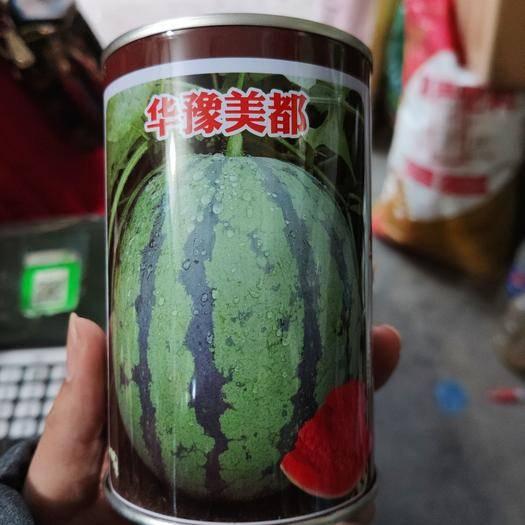 河南省鄭州市中原區 美都西瓜種子 1000粒