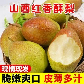 【坏果包赔】现摘现发 红香酥梨新鲜梨子水果脆甜多汁应季包邮