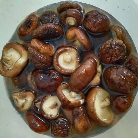 黑龙江省大兴安岭地区加格达奇区 东北特产香菇脆干货个小肉厚椴木金钱菇冬菇干香菇500g包油