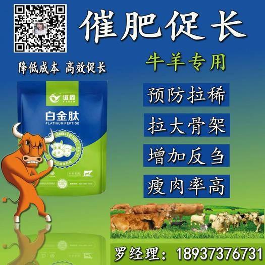 河南省郑州市金水区牛羊育肥熟豆 牛羊吃什么长得快 牛羊催肥用什么好 牛羊专用白金肽!