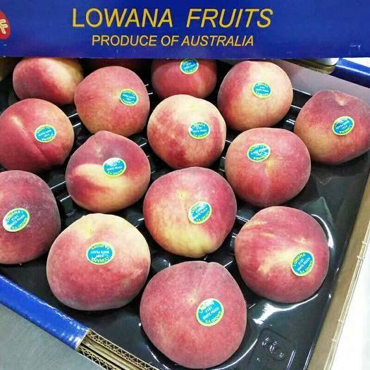 上海市徐匯區 現貨澳洲水蜜桃2斤裝超甜軟桃子新鮮進口水果紅蜜桃毛桃孕婦水果