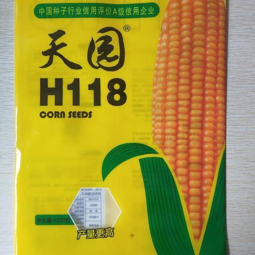 山东省德州市德城区 天园H118玉米种子,白轴适合黄淮海及积温不低于2800度