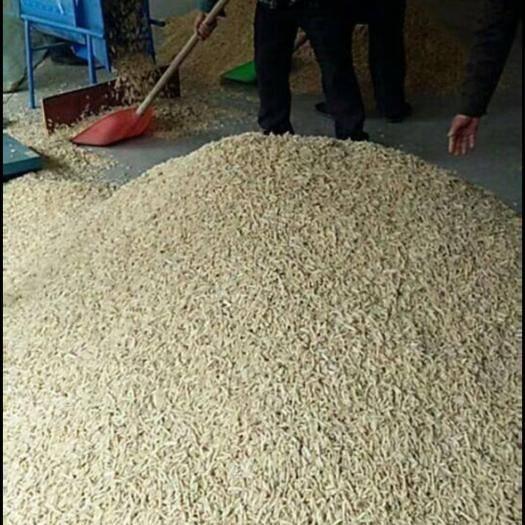 四川省绵阳市三台县 新 四川麦冬无硫特级一手货源川麦冬品质,享誉天下   包邮!