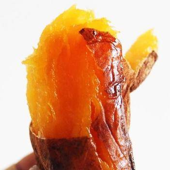 大连瓦房店蜜暑烟薯25