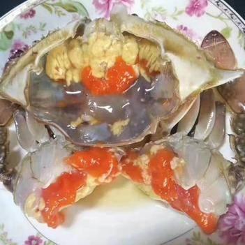 东港当地红膏梭子蟹