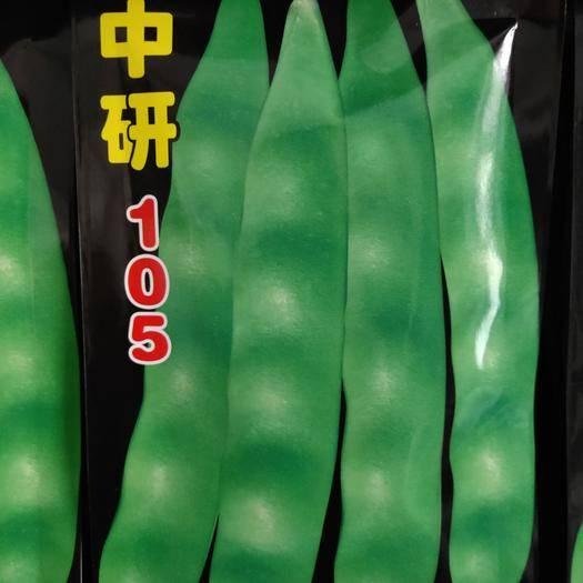吉林省通化市梅河口市豆角种子 105