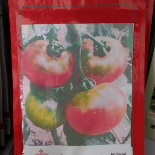 吉林省通化市梅河口市硬粉番茄种子 淘太郎