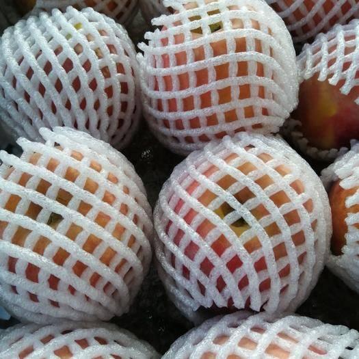 新疆維吾爾自治區阿克蘇地區溫宿縣阿克蘇冰糖心蘋果 80mm以上 條紅 光果