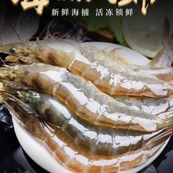 厄瓜多爾白蝦 海捕大蝦超大蝦4斤起鮮活凍蝦海鮮水產基圍蝦白蝦青蝦包郵