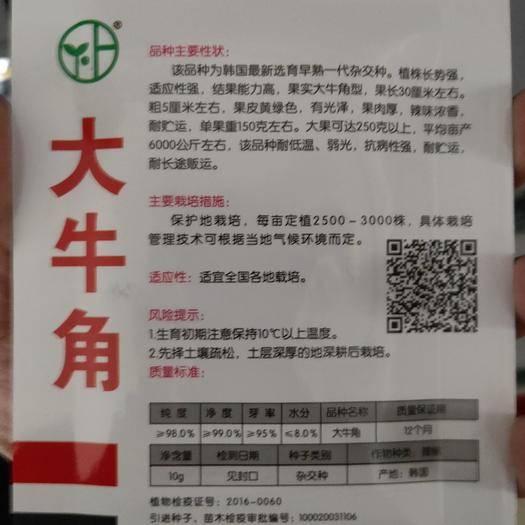 吉林省通化市梅河口市牛角椒种子 大牛角