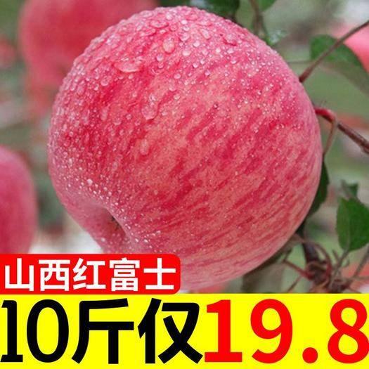 山西省运城市万荣县 【脆甜多汁】苹果大果新鲜水果一整箱冰糖心苹果批发5/10斤包
