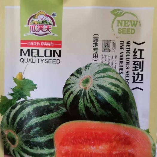 河南省商丘市夏邑县 早熟红到边甜瓜种子该品种属珍贵稀有品种露地专用200粒