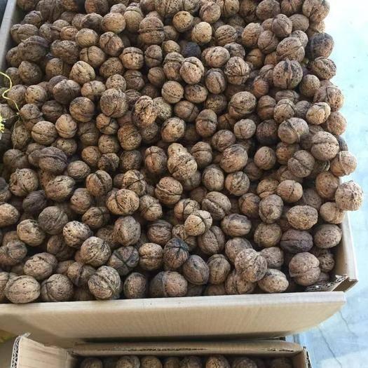 广东省广州市海珠区 云南高山古树原生态核桃纯天然绿色食品