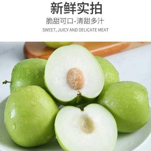 广西壮族自治区贵港市平南县 合作社:青枣种植园,欢迎,批发,零售。
