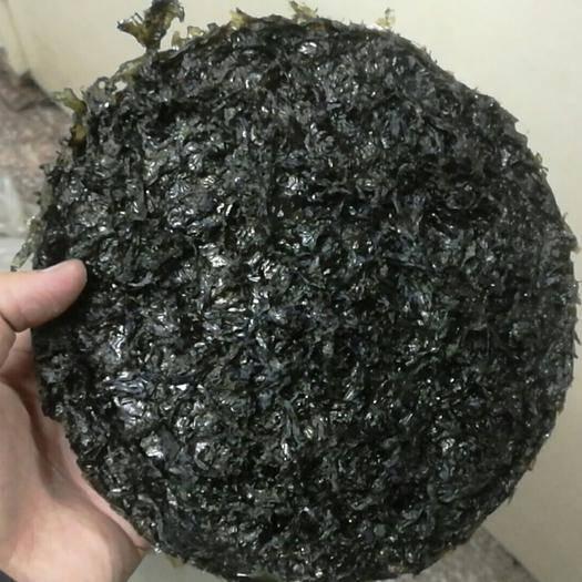 浙江省温州市苍南县 苍南三水半自动园饼紫菜50片