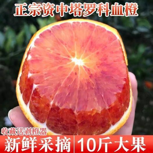 四川省內江市資中縣資中血橙 四川資中塔羅顆血橙一件代發