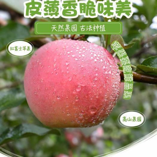 山西省運城市萬榮縣 【壞果包賠】脆蘋果水果新鮮紅富士蘋果整箱5/10斤冰糖心丑
