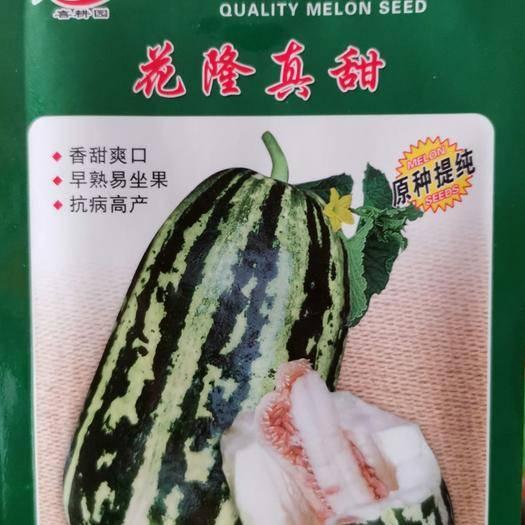 河南省商丘市夏邑县 花隆珍甜甜瓜种子产品 是目前花皮甜瓜的优秀品种之一