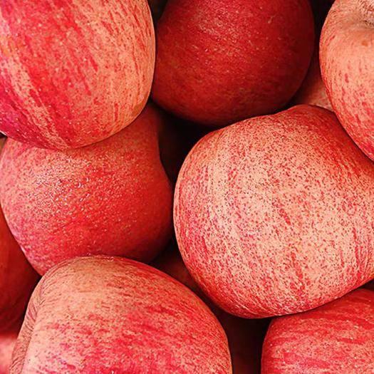 山西省太原市萬柏林區紅富士蘋果 正宗紅富士10斤僅18.9元,支持微商一件代發包郵