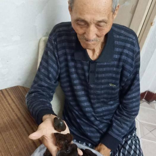 黑龙江省鹤岗市工农区东北黑木耳 今年秋耳,碗狀肉厚,