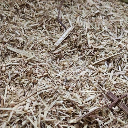 湖南省永州市东安县中药材青蒿 青蒿粗粉可做生物肥料和植物肥料。
