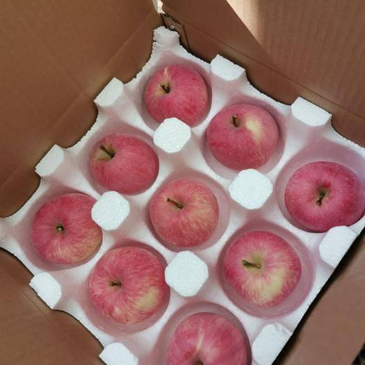 甘肅省慶陽市西峰區 禮盒裝高海拔慶陽紅富士蘋果——送禮過節禮品裝