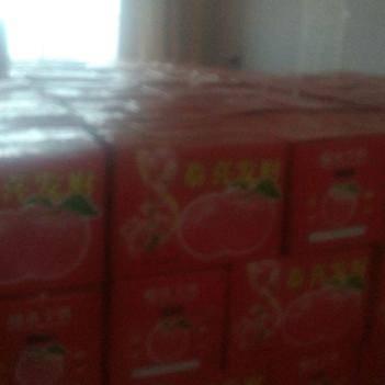 昌紅富士蘋果 80mm以上 黃色 紙+膜袋