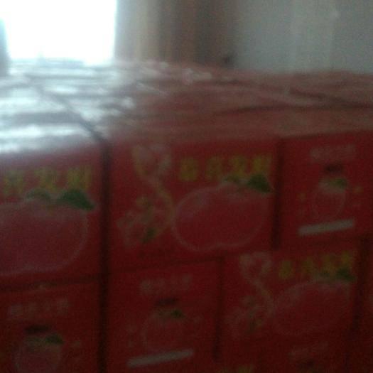 河南省許昌市長葛市昌紅富士蘋果 80mm以上 黃色 紙+膜袋