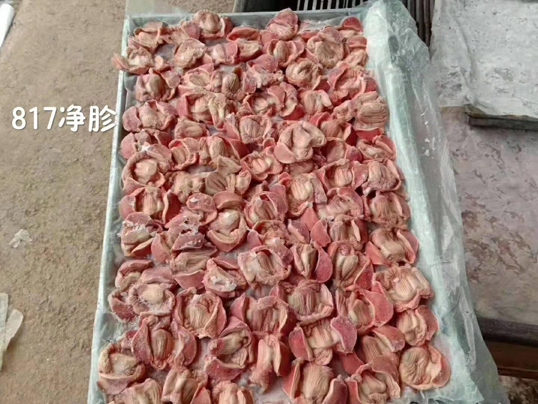 [鸡胗批发]鸡胗 出售 817净胗  10吨价格0.1元/斤