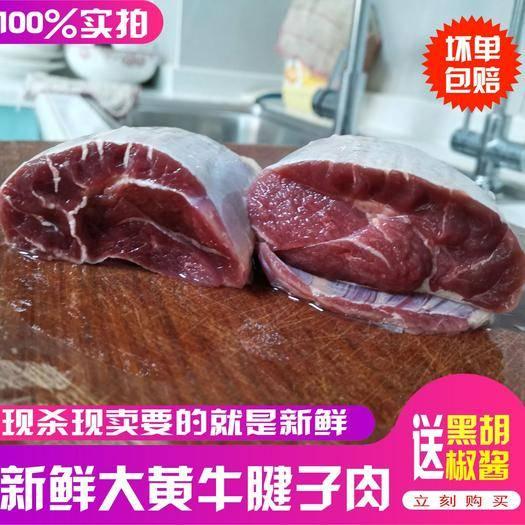 浙江省杭州市上城區 直接拍新鮮純干高品質牛腱子肉牛腿生牛肉批發4斤包郵
