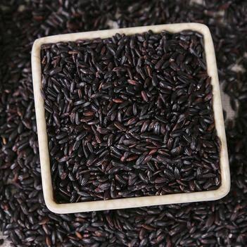 2019优质新米东北黑米黑糯米10斤装糙米农家杂粮黑香米