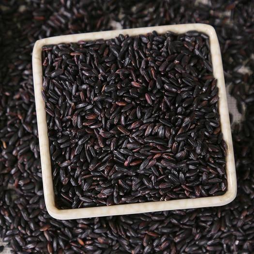黑龍江省哈爾濱市依蘭縣 2019優質新米東北黑米黑糯米10斤裝糙米農家雜糧黑香米