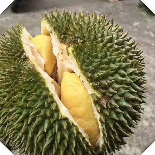 廣西壯族自治區崇左市憑祥市 越南進口貓山王榴蓮 2月2號發貨 2.5斤左右又香又甜又糯