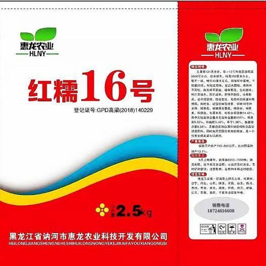 黑龙江省齐齐哈尔市讷河市 矮秆高产酿酒专用高粱品种红糯16