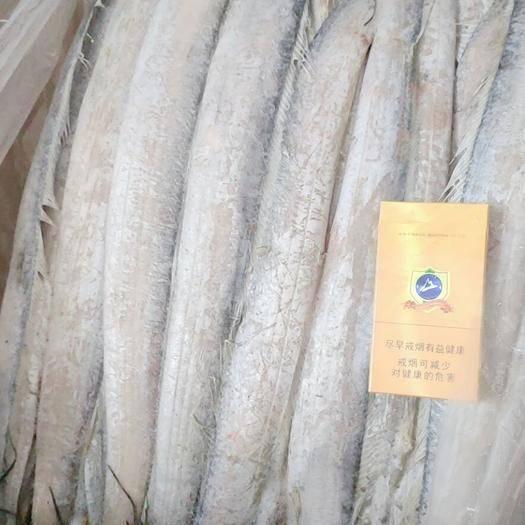 山東省威海市榮成市 威海本地帶魚 燈光 每箱20斤