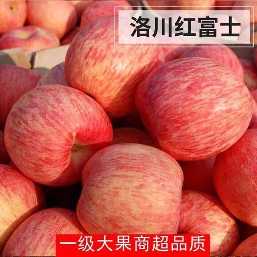 陜西省延安市延長縣 延安蘋果水果新鮮當季陜西洛川紅富士帶箱10批脆甜斤一整箱大