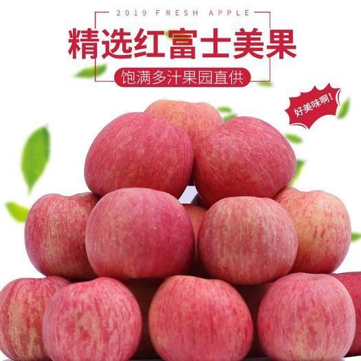 山西省運城市臨猗縣 山西當季紅富士蘋果新鮮水果現摘現發禮盒裝帶箱10斤