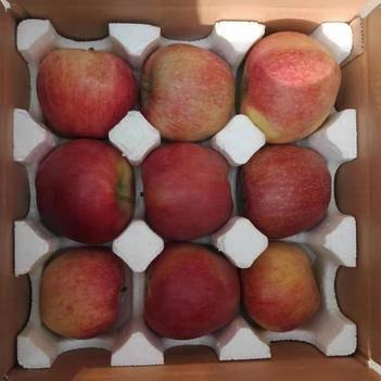 河北紅星蘋果粉面沙甜新鮮產地直發大量上市年后發貨