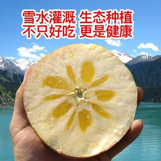 新疆維吾爾自治區昌吉回族自治州奇臺縣 新疆冰糖蘋果
